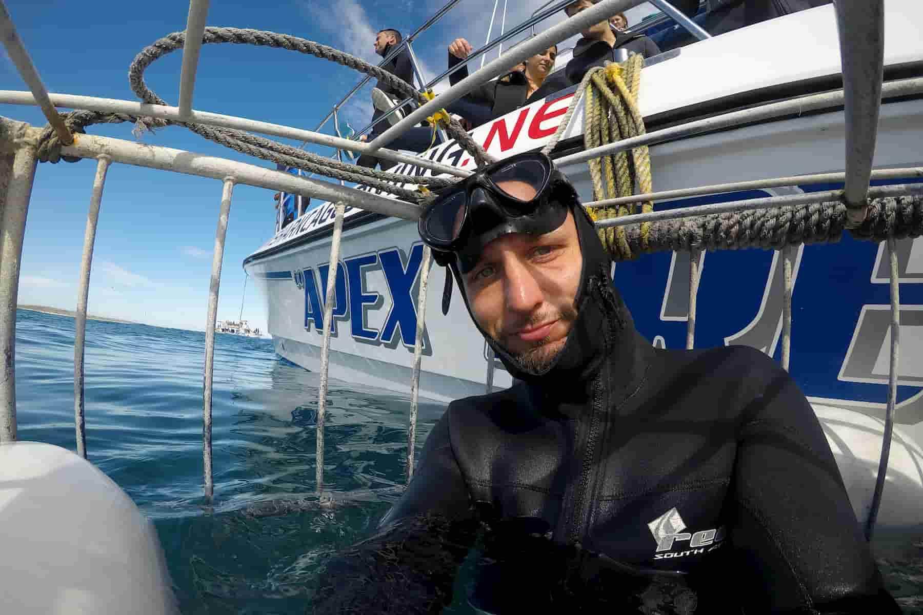 En la jaula para ver al tiburon blanco www.elpensador.info